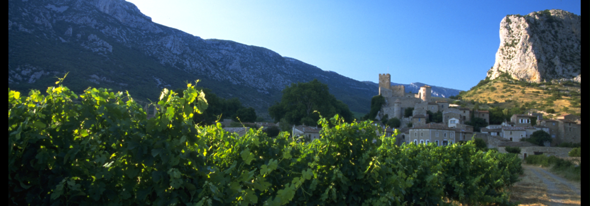 Wines of Languedoc Sud de France
